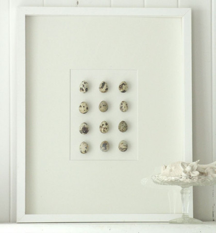 a little bit besotted with this quail's egg box frame. so simple and beautiful and the colours and textures of the eggs are just stunning set against the clean mount and frame.  another beauty from this brilliant website: www.paleandinteresting.com