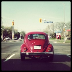 Sweet old VW Beetle •TAGS• #VW #Beetle #old #red #car #street #Mississauga #Canada #bug #Volkswagen #beauty #Android #TeamAndroid #AndroidCommunity #Androidography #AndroidOnly #IG #Instagram #IGers #InstagramHub #InstaMood #InstaGood #PhotoOfTheDay #Photography #Photo #IGNation #IGAddict #InstaGo ••• (Taken with instagram)