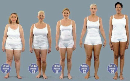 "redefiningbodyimage:  madamethursday:  [Image: Five models of varying heights from shortest to tallest, of varying skin and hair colors and body types standing next to each other, hands by their sides wearing only white sleeveless tops with thin straps and white, very short shorts, looking forward. All of them weight 150lbs. The heights and dresses are: 5ft 2in, Dress size:14, 5ft 4in, dress size 18, 5ft 8in Dress size 12, 5ft 11in dress size twelve, 6ft 1in dress size 10.""] stophatingyourbody:  redgaia:  They all weigh 150lbs  There is no 'right' body type. Weight looks different on different people, and it is ALL OKAY. Don't compare yourself to other people's bodies, learn to love the body you're in NOW and what it can do NOW.  First, commentary on the commentary: Let's be careful when commanding people imperatively to ""love the body you're in"". That's extremely ableistic and erases those who may hate their current bodies for good damn reason and shouldn't be told to love something that may be causing them lots of physical and mental pain. I can think of about fifty different reasons this may be the wrong thing to say to someone who is genderqueer or trans* or disabled. It's okay to hate your body sometimes. It's yours and you're allowed to not be happy with it. If you hate it 24/7, that might not be a pleasant way to exist, but it isn't wrong. You're not doing activism or justice wrong.  Also, we're going to compare our bodies to other's naturally. It's not wrong to NOTICE when we're different. I'm a big damn woman. I don't want someone pretending like they don't notice that when I stand next to my size 2 sister that there ain't some fundamental differences. Those differences are part of who we are.  Comparing and noticing differences fine. Making that comparison the end all, be all final judgment with an eye to deciding who has a ""better"" or more ""right"" body is what's wrong.  Now on to me going ""yay!"" about the pic.  See, this is one of the things that I want to put in front of everyone who's crying about the obesity epidemic and BMI's because weight =/= fatness. That's been something that's sorely missed when we're talking about this issue. 150lbs can go a lot of ways. Yet, you'd have people quickly wading in to say ""oh, 150lbs isn't obese! It isn't even really overweight! That's sort of normal, right?"" Ha! Fuck normal. Also, this picture shows how much bone structure and build go into a dress size as much as weight (the number) and general fatness. Notice that there's only a two inch difference between model# 1 and model #2 but one is  a size 14 and one is a size 18. Because their bodies are SHAPED differently, because one is heavier on top than another. Because one needs a larger TOP and the other doesn't. Also notice that model #1 is largest around the middle and legs. If one took merely that models shirt size and not pant, they'd probably put that model in size 12.  But the reverse is true of the model one down the line.  What would be more revealing is to talk about their different shirt and pants size. Because model #2 (from the left) would probably wear a size 14 or lower pant, but a size 18 top. Similarly model #4 (next ot last) would probably be a size 8-10 on top but because they have very wide hips and upper thighs they would take a 12-14 on the bottom.  Likewise, notice the last three models (the tallest/thinnest ones). Notice that the next to last (the 5ft 11in model) is thinner looking than the 5ft 8in model, but wears her same size, even though from the waist up their body smaller than the other person's. Why? Because they have much wider hips. Same weight, and only two/three inches of height difference on either side, but because of the body's shape and distribution of weight, they are in a larger size!  In fact, properly sized for shirt and pants not just dresses, all of these models probably wear a range from a size 6 to a size 18.  Size 6 to size 18. And they are ALL 150 lbs.   I want to shove this graphic at so many people. From comic book artists to obesity epidemic scaremongers to clothing manufacturers.   Rad commentary!"