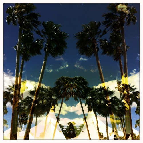 "I love this silly, hipster picture. Palm trees and tents of Coachella. Indio California. It was all very last minute for me. A friend, last wednesday, said ""I have a ticket, a place and can give you a ride… wanna come?"" And, who in their right mind says no to that?"