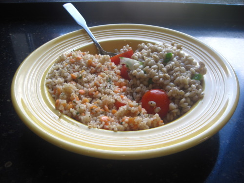 Day 19: Bulgur w/ Red Lentil and Fennel (left), Barley w/ tomato and cucumber (right) First of all, I have to hand it to Darren for making it this far into his 30 Day Challenge of vegetarianism. I wouldn't have made it this far, especially with some of the vegetarian options that Shafer provides on a daily basis. That being said, I was about to make another lackluster attempt at a whole bowl of mush, so I decided to try two veggie-friendly dishes I haven't had before instead. Starting off with the barley, I was really perplexed at how oily it was. I expected something bland and boring, but the oil brought out the flavor within that made it quite enjoyable. Succinctly, 'twas supple yet satisfying for something as basic as it is. Bulgur is an entirely different enema altogether. A turkish cuisine commonly found in Armenia, Bulgaria, and Turkey, I could taste traces of familiar dishes in every bite, but couldn't quite tell what it'd be likened to. The texture proved similar to couscous, but the flavor was a vast departure. Part of me wants to believe that I could have gone two bowls deep of just this alone. The rest of me knows better, thanks to the confusion brought on by the presence of lentils in the dish. My tongue couldn't handle the juxtaposition of awesome and blegh at the same time. As a result, I have to give this one a perfectly average recommendation to anyone looking to try something left-field for the typical American palate. (Subnote: As a bonus, I thoroughly treated myself with a b-rate Chicago dog that totally made my week. Even though Shafer didn't have sesame seed buns and pretty much winged the whole thing, props for making it so that I didn't know the difference when I was chowing down. You get all the awards today.)