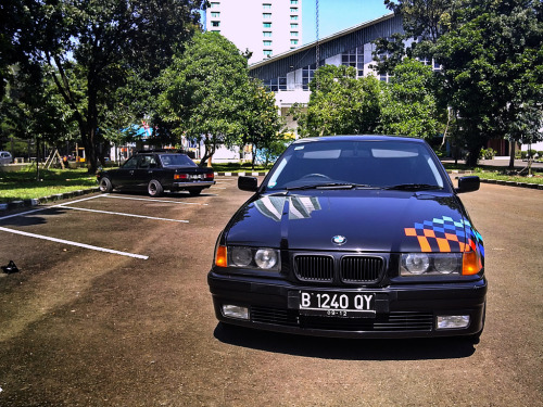 BMW (E36) 323i - Wishful Thinking