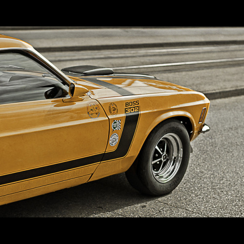 Who's the Boss?  starring the Ford Mustang BOSS 302 By mr.KIO