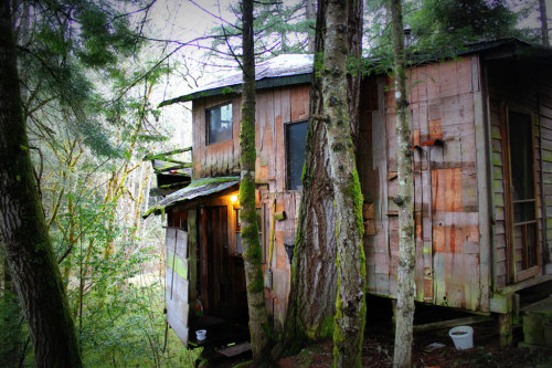 cabinporn:  Cabin in Tenmile, Oregon. Built in the early 1970s with remnants of a home built in the late 1800s. Submitted and photographed by Kasey McMahon.