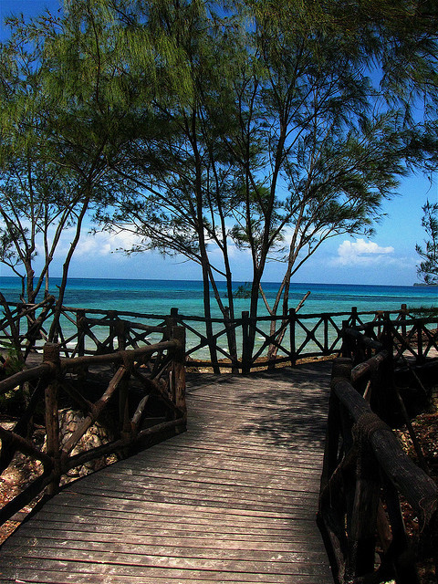 visitheworld:  Wooden path to the beach in Zanzibar, Tanzania (by syazamst).