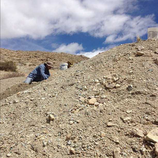 Digging for new stones! #rockhounding #ilovemylife #iphonephoto #nofilter #nature #nevada #outside (Taken with instagram)