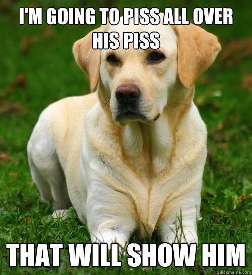 tastefullyoffensive:  Dog Logic  He looks like my doggie.