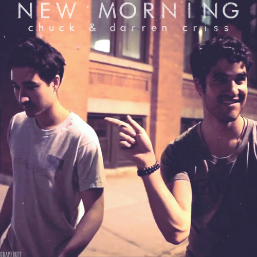 grapfruit:  darren criss vinyl records - new morning