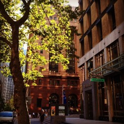 Hey gorgeous #tiffany #sydney #igerssydney #tree #autumn #autumntree (Taken with Instagram at Tiffany & Co.)