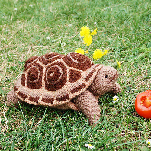 turtlefeed:  Knitted Tortoise by Debi Bibirkin.