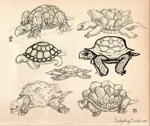 Concepts for a Turtle Boss.