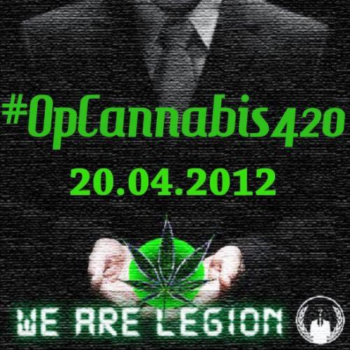 #OpCannabis - Stage 1, happening right now!