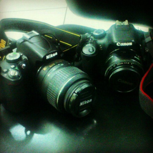 Say hi to these lovely ladies <3 #CameraLove #Want (Taken with instagram)