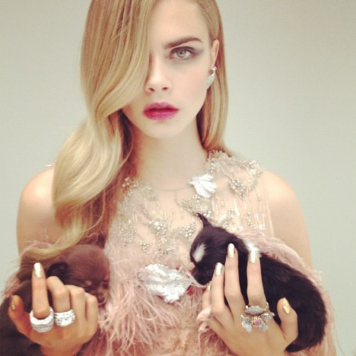 cieshells:  this hair and makeup needs to happen showstudio:  Puppy with dress by Giles and jewellery by Fabergé (Taken with instagram)