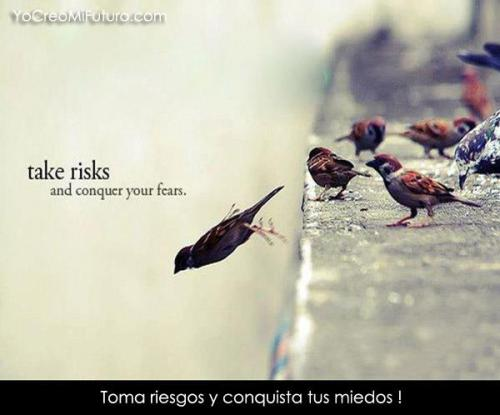 yogachocolatelove:  Take risks and conquer your fears  If you never face your fear you'll never know just what you might be missing or how wonderful it may be. Take the plunge.