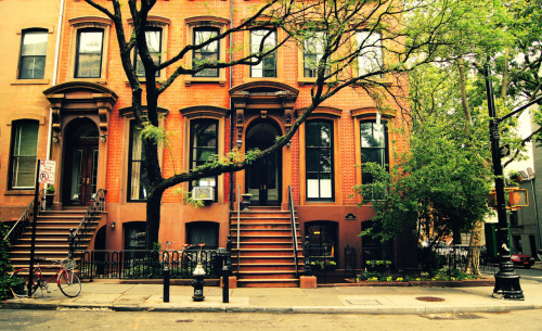"nythroughthelens:  Trees do indeed grow in Brooklyn. Cobble Hill Brownstones. New York City. The light after a heavy rain is transcendent. Deep golden hues cling to the damp tree branches as they frame lush green leaves reeling under the weight of the rain water. It's all the more impressive against a backdrop of beautiful brick brownstones that can be found in neighborhoods like Cobble Hill located in Brooklyn. Cobble Hill (or Ponkiesbergh as it was first called) was originally settled during the 1640's by Dutch farmers. The name ""Cobble Hill"", according to various historical sources, came from the large amount of cobble stones being disposed in the site. The cobble stones were used as ballast on the trading ships arriving from Europe. The high elevation point at the corner of present day Atlantic Avenue and Court Street, where the greatest amount of the cobble stones was disposed, was used as a Fort during both the American War of Independence and the War of 1812."