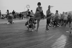 Coney Island Boardwalk III