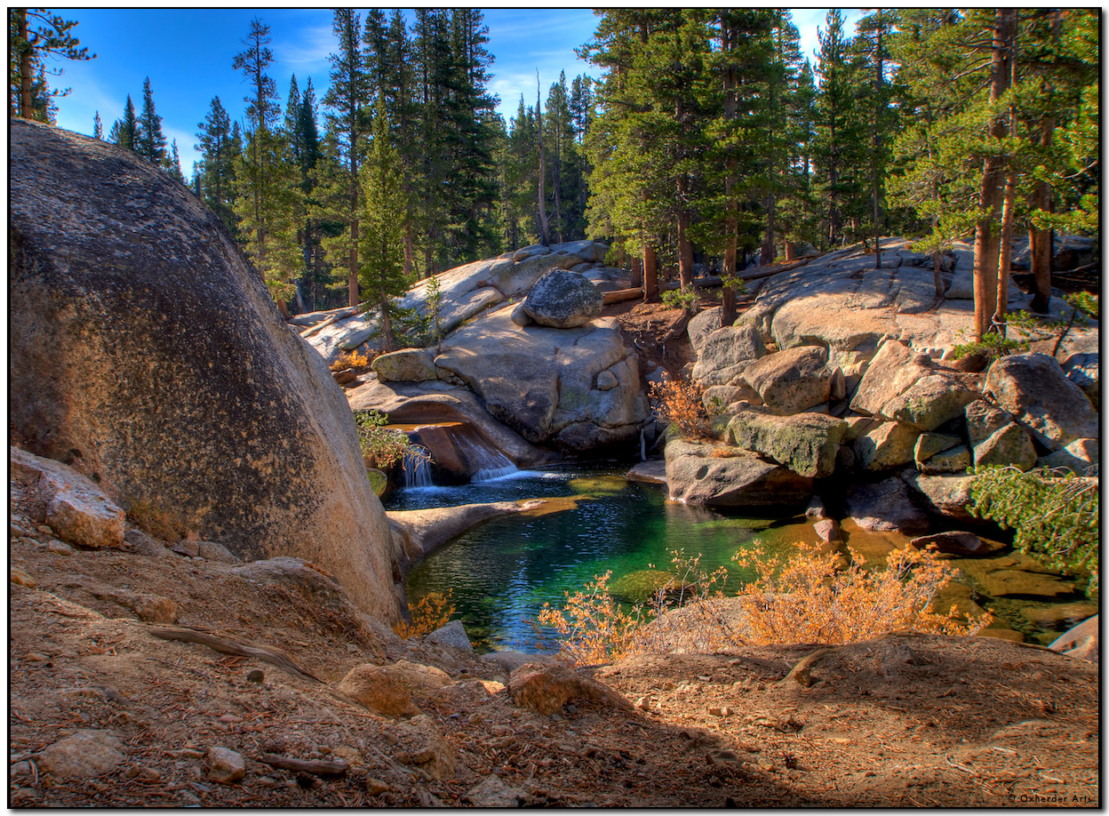 Yosemite, Dana Fork of the Tuolumne River