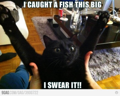 I caught a fish this big!