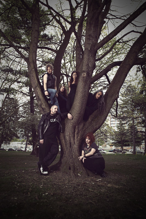 Welcome to the KEXP Tumblr, launched in celebration of Goths In Trees Day! Stay tuned for more photos throughout the day, and be sure to share your photos with us on Tumblr, tagged #GothsInTrees! photo credit: William Anthony
