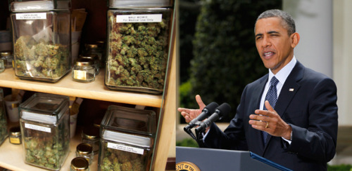 theatlantic:  On National Pot Day, A Speech President Obama Should Give  My Fellow Americans: Every day this Administration seeks as best it can to evaluate our nation's existing policies and priorities to determine whether they continue to make sense or whether they are counterproductive to America's evolving goals and ideals. As individuals, we make these sorts of re-evaluations all the time in our own lives. We learn from experience what works and what does not. We change our minds. We strive to be better. And as a nation we must do the same to ensure that the path we have chosen is still the one we want to be on. So, after careful consideration and a through review by the Justice Department, and with the consent and cooperation of other relevant federal agencies, I announce today that this Administration will have a new approach to the issue of medical marijuana in those states which have legalized it. Our new policies are consistent with the promises I made as a candidate, they finally make good on pronouncements I made early in my term, they are faithful in their traditional deference to states' rights, and they sensibly redirect federal resources at a time when we need every budget dollar we can find. I have directed the attorney general to issue a directive to all U.S. attorneys and other federal officials that they may no longer raid or threaten to prosecute medical-marijuana growers and distributors in those states that have legalized the use of the drug. As of today, the federal government will be content to allow state authorities to monitor those growers and distributors to ensure that they are complying with state law. To those states we say: We are still here to help you if you need us. To the American people we say: No longer will your federal tax dollars be spent interfering with these particular state policy choices. Read more. [Images: Reuters]