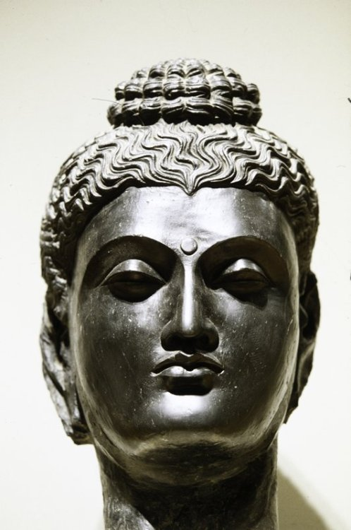 Head of BuddhaARTIST:Artist Unknown, IndianDATE:0-299 The Minneapolis Institute of Arts
