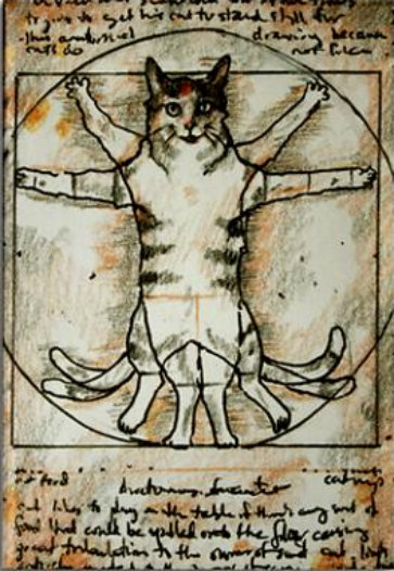 artemisdreaming:                                                Vitruvian Cat - Maggie Stiefvater . The smallest feline is a masterpiece. ~Leonardo da Vinci Vitruvian Cat. :-/ LOL