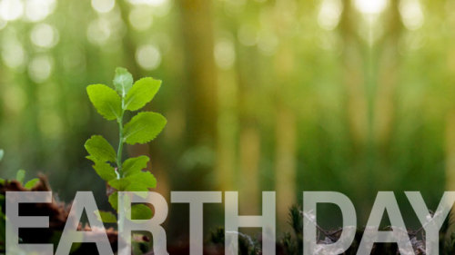 "pbstv:  Celebrate Earth Day this Weekend With Some PBS Films! Over on PBS.org, we've curated our best videos on the environment. We've got the most recent and compelling green documentaries, photos, and articles on our Earth Day collection page. Today's video: Nature's new film, ""River of No Return.""  Have a green weekend, everybody!"