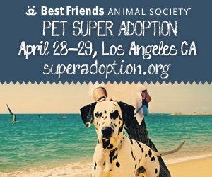 Who's looking for a new four-legged friend?! Best Friends Animal Society is holding a pet adoption this weekend with a bunch of fun loving felines and puppies looking for a nice new home. They're also looking for volunteers so if you're animal lover but just can't fit a furball into your home right this very moment, this is just one way you can spend some time with the tail-waggers. Click on the flyer for full details.