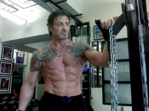 gymspire-me:  Sylvester Stallone training for The Expendables, age 63.Age is no barrier - go and get it.
