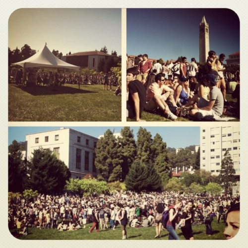 romeomy:  Only at UC Berkeley on 420… (Taken with Instagram at University of California Berkeley)  I was there yesterday too. It was so warm and there were so many friendly people everywhere. It was a great was to start the day.