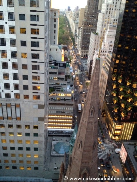 A sliver of Central Park and 5th Avenue…but what a sliver it is… - View from the terrace of Salon de Ning, Peninsula Hotel Rooftop