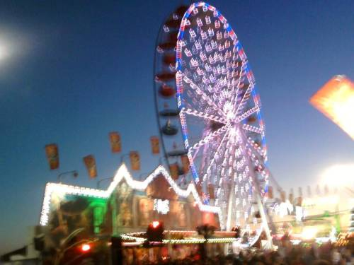 danyellarenae:  Pima county fair. April 20. Best day ever.  so much fun