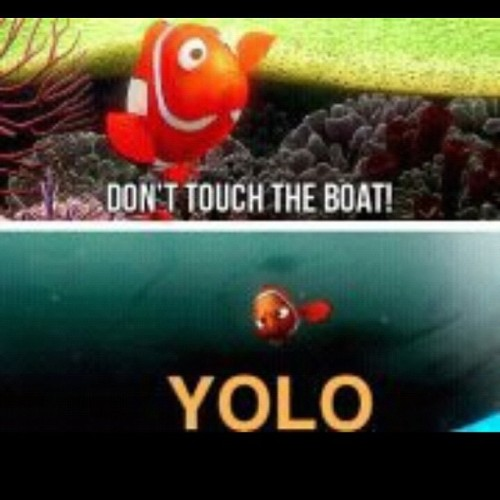 Yolo (Taken with instagram)