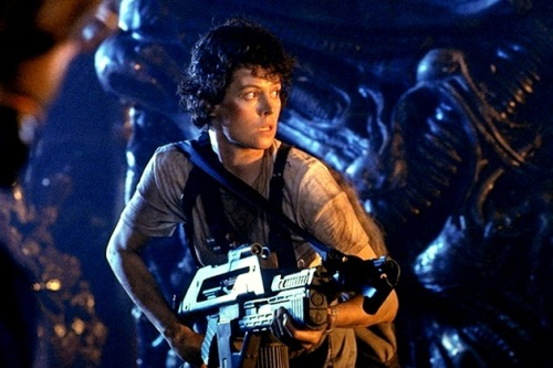 Ripley in the hive via nicosan1
