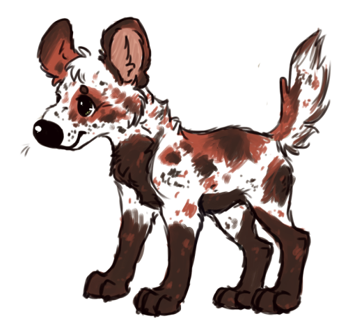 Random wild dog design~ I'm not gonna use it, so if anyone wants it just let me know c: