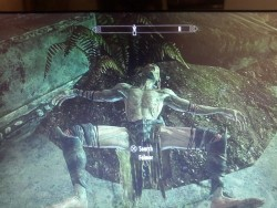 A Falmer was presenting itself to me… Thanks but no thanks