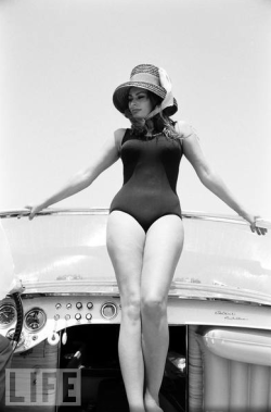 swimsuitdispatch:  Sophia Loren
