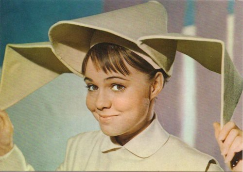 Sally Field as Sister Batrille…The Flying Nun (or, as she was dubbed due to her habit of ruining the dates of playboy Carlos Ramirez -Sister Cockblock)