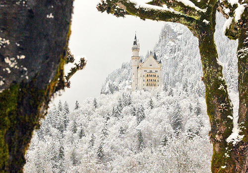 allthingseurope:  Neuschwanstein Castle, Bavaria, Germany (by Luiz Pires)