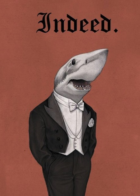 harebrained:  Great White Snob.