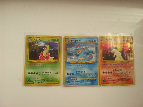 My Sexy Neo Genesis Japanese Pokemon Cards