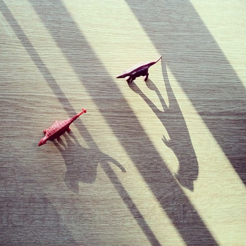Dinosaur shadows. (Taken with instagram)