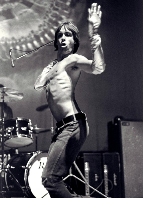 astralsilence:  It's Iggy Pop's birthday today!!!  65 years dancing to the beat of the living dead.