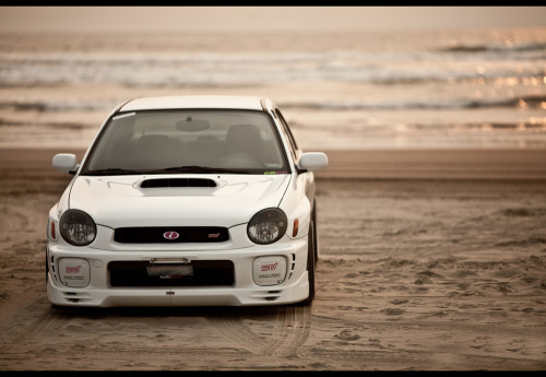daviderik:  This picture is perfect to me.   Bugeye on the beach!