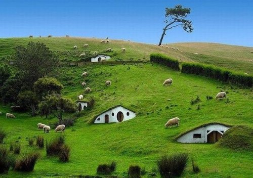 Real Hobbit Houses, New Zealand.