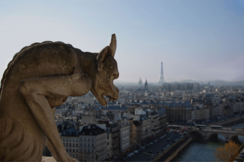 Gargoyle over looking Paris