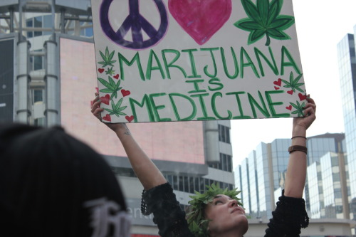 greenplaidphotography:  MARIJUANA IS MEDICINE