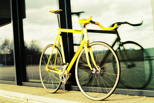 fixietime:  Pinarello  Is all about Yellow