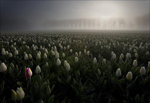 Landscape Photography by Maciej Duczynski